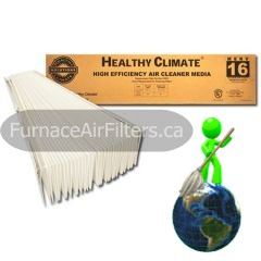Lennox X5425 Healthy Climate Replacement Media Filter 20x25x6